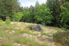 Utsiktsplats för rävarna vid sitt gryt.