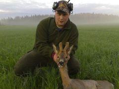 Jakt,natur, hundar