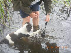 Iris vänjer sig vid vatten