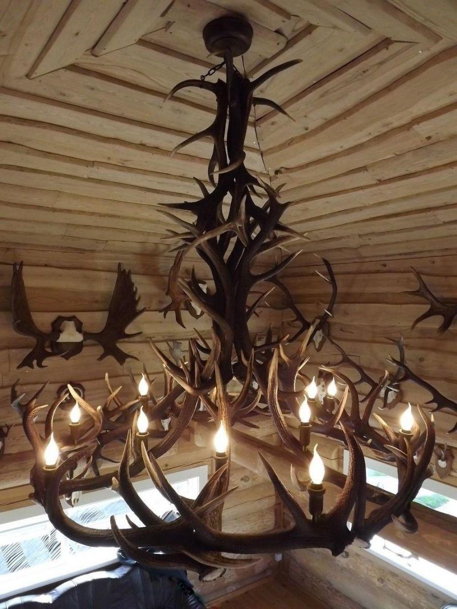 Chandelier of red deer antler TP198