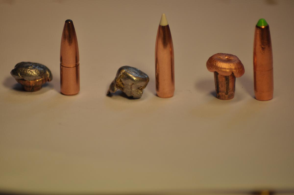 Kulor vi hittat i vilt eller efter testskjutningar - Kulor ...