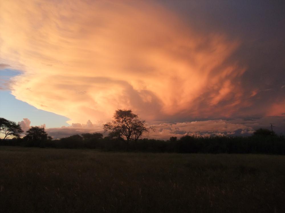 Namibia 2011 del 2 249.JPG