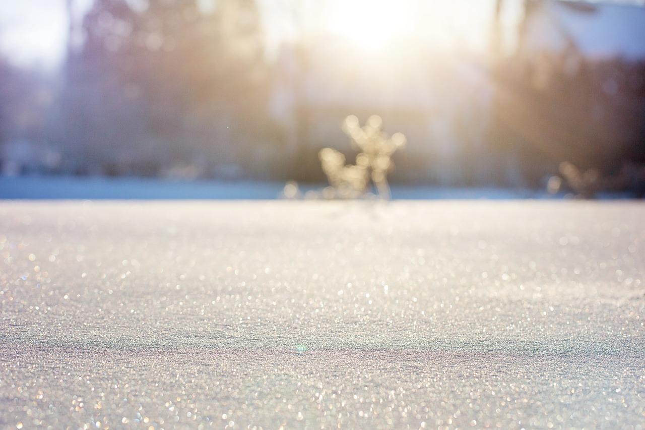 Ska man testa att åka på vinterjakt?